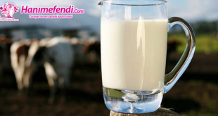 organik süt ne kadar anne sütü